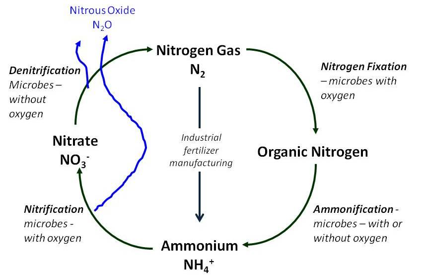 understanding nitrous oxide � the greenhouse gas of most