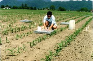 We measured N2O emission from manured soils at Agriculture and Agri-Food Canada in 1996.
