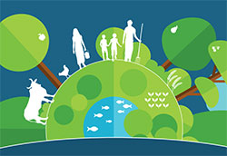 Importance of our environment in managing antimicrobial resistance (drawing from FAO website)